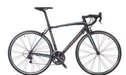 Bianchi Endurance Bikes